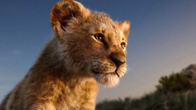 Первый трейлер «Короля Льва» — «живого» ремейка классического мультфильма