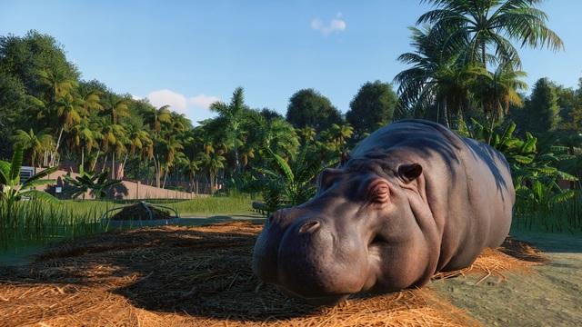 Анонс Planet Zoo — «ультимативного» симулятора зоопарка от авторов Elite Dangerous